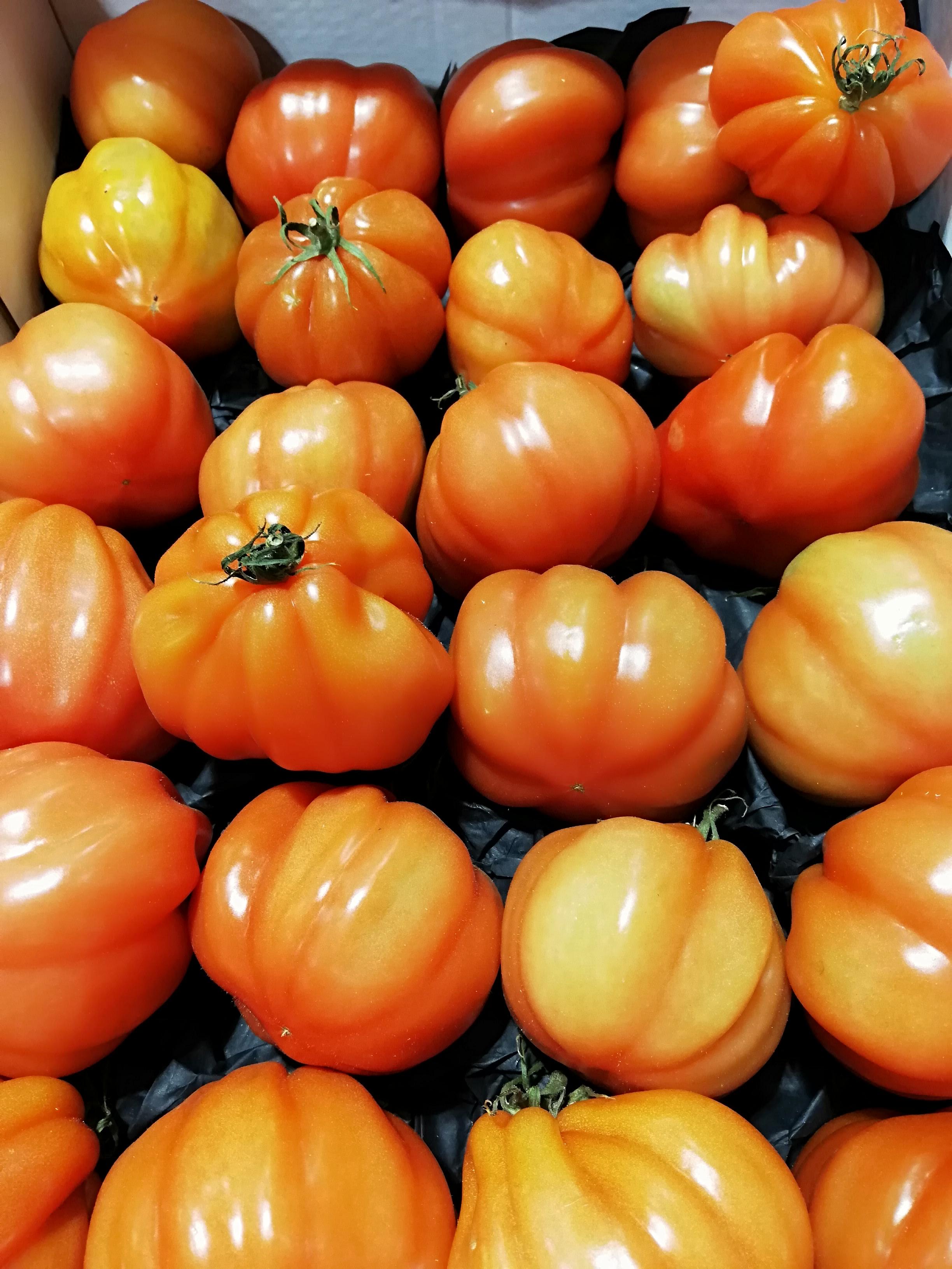 Oksehjerte tomater